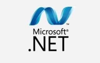 MS .NET-min