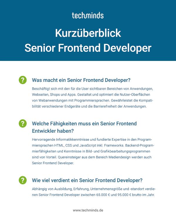 Senior Frontend Developer Kurzüberblick