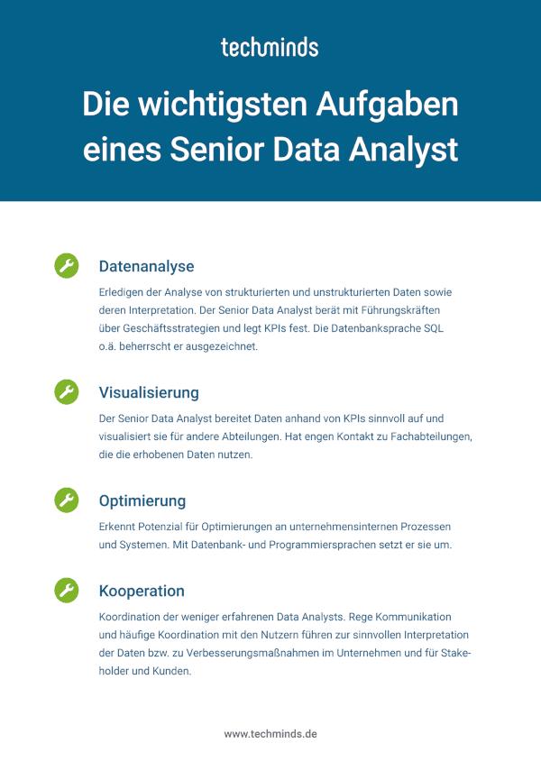 Senior Data Analyst Aufgaben