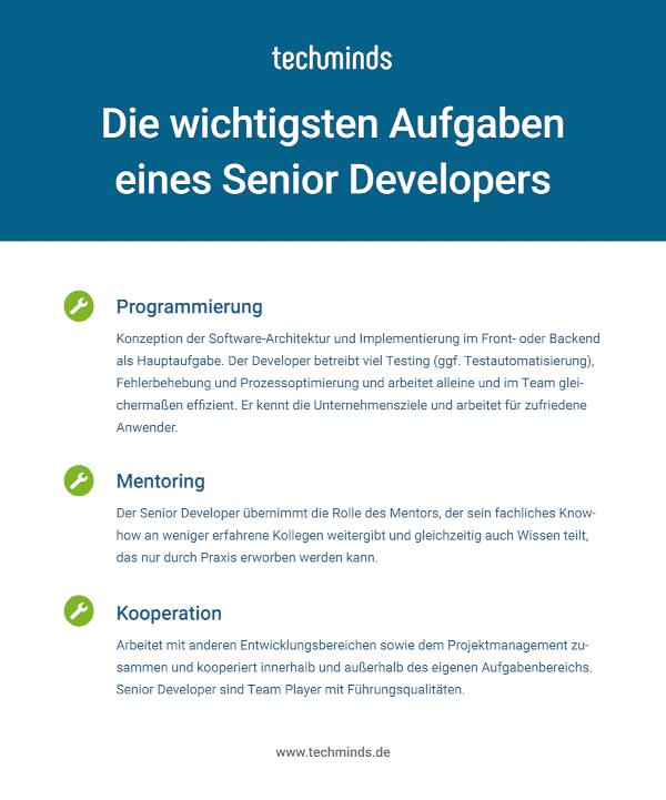 Senior Developer Aufgaben