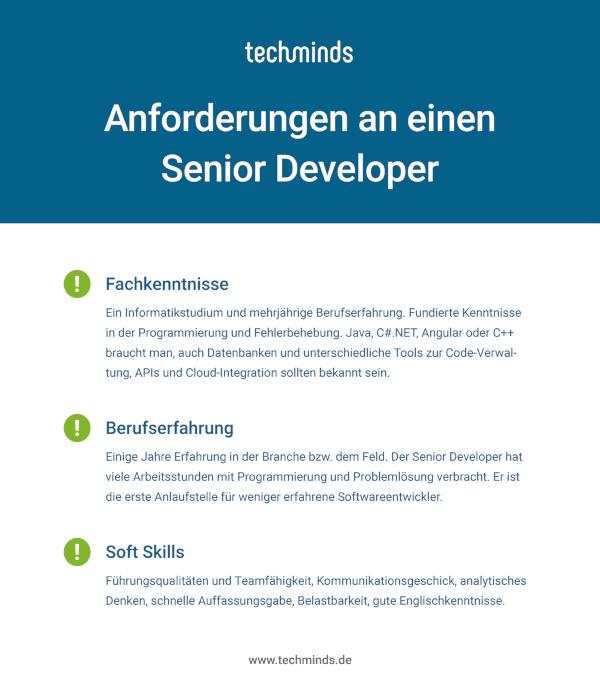 Senior Developer Anforderungen