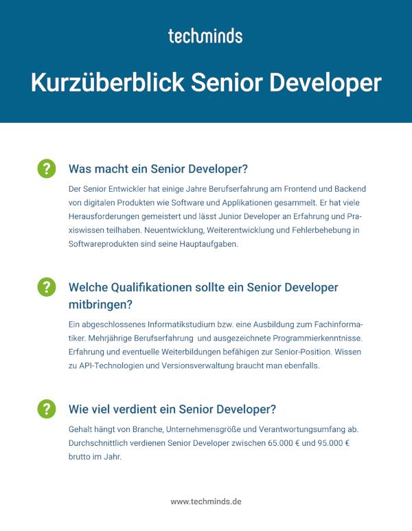 Senior Developer Kurzüberblick